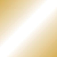 単色おりがみ金色 100枚 B261J-25