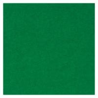 フェルト 20cm角 10枚 No440 緑 177-068