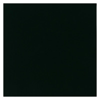 フェルト 20cm角 10枚 No790 黒 177-045