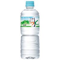 六甲のおいしい水PET 600ml 24本