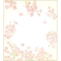 花色紙 さくら ケ636