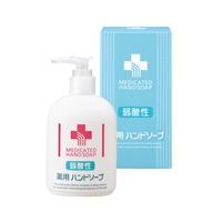 弱酸性 薬用ハンドソープ 497-03B