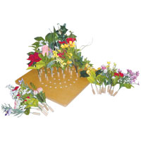 お花でガーデニングA CA001