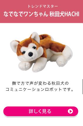 秋田犬 HACHI