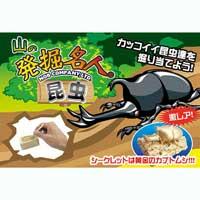 山の発掘名人(昆虫) KH3929