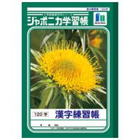 漢字練習 JL-50-2 120字