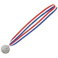 銀メダル NM-2
