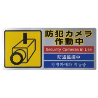 ピクトステッカー 防犯カメラ作動 SEC291-1