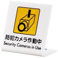 L型ピクトサイン 防犯カメラ作動中 UP668-1