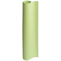 方眼模造紙50枚巻き ウグイス P150J-G