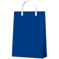 カラーコーティングバッグA4 紺10枚CCB-01