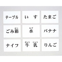 言語訓練文字カード 食物・家具 1245S-M