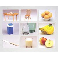 言語訓練写真カード2 食物と家具1245S